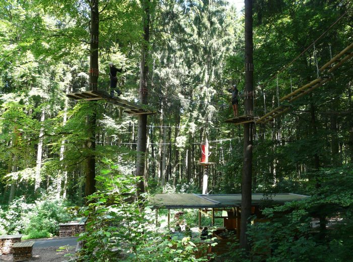high-ropes-course-58662_1920